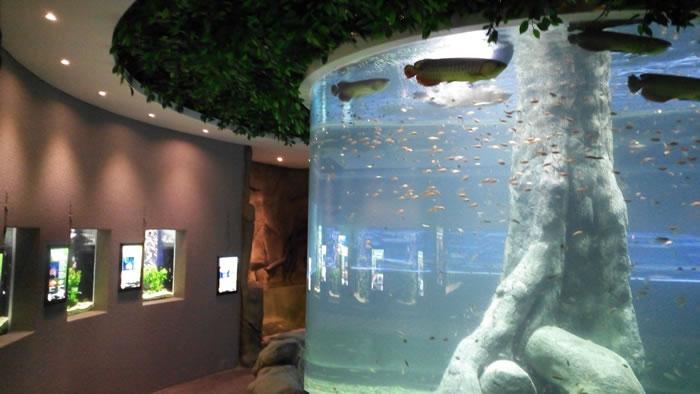 the-shore-oceanarium-1