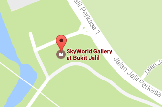 google-map-skyluxuepc