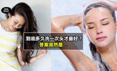 【每天洗头会超级伤?】到底多久洗一次头才最好? 专家竟然这么说….网友: 看来不像掉头发就不应该天天洗头啊!