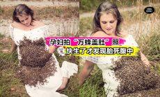 """【孕妇拍""""蜜蜂盖肚""""照,胎儿夭折】2万只蜜蜂在肚子上爬,还被叮了3次,网友:太疯狂了!"""
