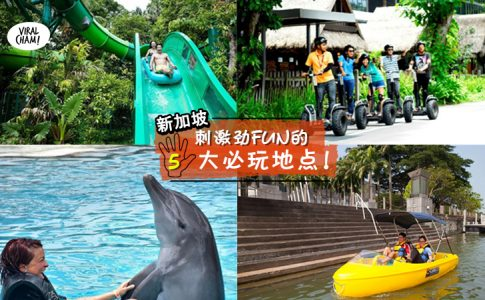 【玩转新加坡乐翻天!】5大好玩好看の必去景点全攻略⚡走入电影情节+看海豚表演!